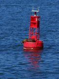 Buoy Seal Royalty Free Stock Photography