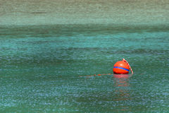 Buoy on turquoise Stock Photography