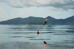 Buoyancy na morzu dla teren granicy i ochrony obrazy royalty free