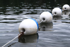 Buoys. Diagonal composition of white and blue buoys floating on water Royalty Free Stock Photography