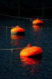 Buoys on Bermeo port Royalty Free Stock Photo