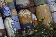 Buoys in the flower bed Royalty Free Stock Photography