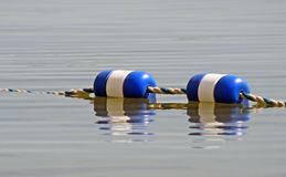 Buoys strung together and floating on surface of water Royalty Free Stock Images