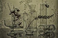 Buques de cristal con las ramitas Imagen de archivo libre de regalías