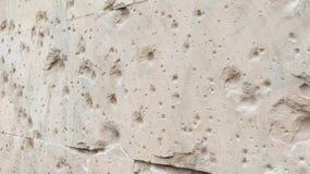 Buracos de bala da construção de Berlim Fotografia de Stock Royalty Free