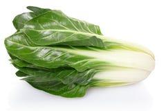 Burak lub bety vulgaris Obraz Stock