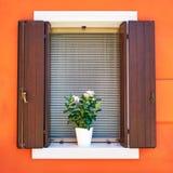 burano和谐海岛意大利奇妙安排威尼斯 传统五颜六色的墙壁和窗口与被打开的快门和花在罐 免版税库存照片