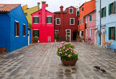 Burano backyard. Stock Photo