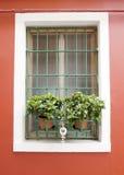 Burano fönster Royaltyfri Bild