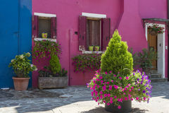 Burano house, Italy. Door and windows of a colorful house on the beautiful Island of Burano in Italy, july 2015 Stock Images