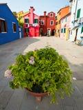 Burano Island, Italy Royalty Free Stock Image
