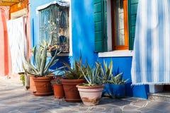 Burano, Venezia, Italie Détails des fenêtres et des portes des maisons colorées en île de Burano images libres de droits