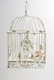 Burattino di legno nella seduta della gabbia per uccelli Fotografie Stock