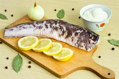 Burbot fish Royalty Free Stock Photos