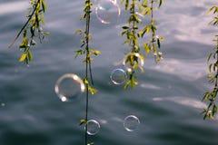 Burbuja colorida Fotos de archivo libres de regalías