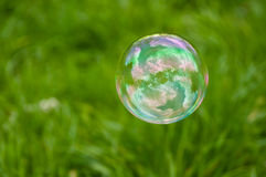 Burbuja de jabón Foto de archivo libre de regalías