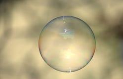 Burbuja de jabón clara en el contexto ligero Imagen de archivo libre de regalías