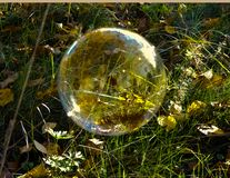 Burbuja de jabón en la hierba imagenes de archivo