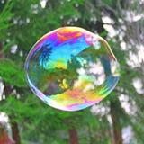 Burbuja de jabón grande Fotografía de archivo libre de regalías