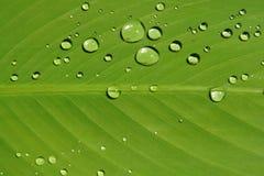 Burbuja del agua Imagenes de archivo