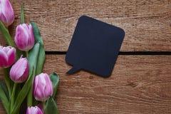 Burbuja del discurso del mensaje de la primavera que obra recíprocamente y tulipanes rosados Imagen de archivo