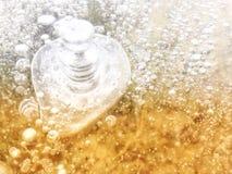 Burbuja del hielo Fotografía de archivo