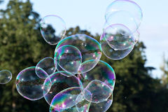 Burbujas contra árboles y el cielo verdes Imágenes de archivo libres de regalías