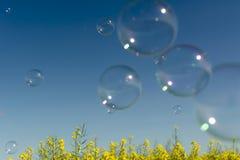 Burbujas de jabón, burbuja de jabón que sopla en fondo del cielo azul Fotografía de archivo libre de regalías