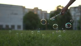 Burbujas de jabón coloridas, creadas por una muchacha, mosca en hierba verde en la cámara lenta metrajes