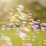 Burbujas del verano Imagen de archivo libre de regalías