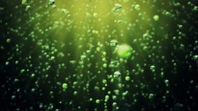 Burbujas efervescentes de la bebida contra verde oscuro metrajes