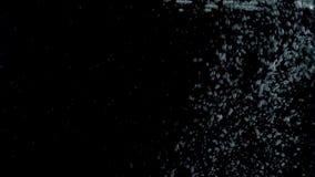 Burbujas que suben a la superficie en fondos negros Cámara lenta almacen de metraje de vídeo