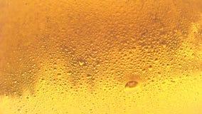 Burbujea de movimiento lento para arriba en vidrio de cerveza fría almacen de metraje de vídeo