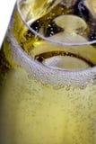 Burbujeante en un vidrio del champán Foto de archivo libre de regalías