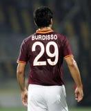 Burdisso стоковое изображение rf