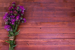 Burdock flowers. On a wooden with copy space royalty free stock photography