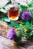 Burdocks medicina Royalty Free Stock Photography