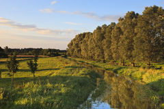 Bure Valley Royalty Free Stock Image