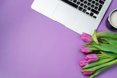 Bureau de femme avec l'ordinateur portable, le café de matin et les tulipes sur b violet Photos stock