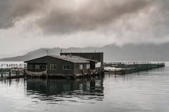 Bureau de ferme du Roi Salmon dans la baie de Ruakaka photo stock