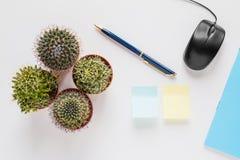 Bureau of huislijstbureau, hoogste mening Kleine cactussen, pen, computermuis, notitieboekje op witte achtergrond Vlak leg Stock Foto