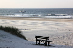 Bureblinkert alla spiaggia di Ameland, Olanda Fotografie Stock Libere da Diritti
