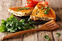 Burek caliente delicioso con el primer de la carne picadita horizontal Imagenes de archivo
