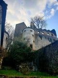 Burg ehrenberg lizenzfreie stockfotos