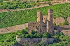 Burg Ehrenfels Stock Photography