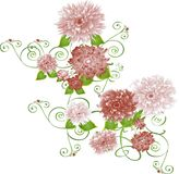 Burgandy flowers. Brgandy flower illustrations on a vine Royalty Free Stock Image