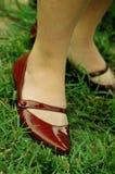 Burgandy Schuhe gegen Gras Stockbild