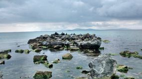 Burgas. Birds fishing between the rocks royalty free stock photography