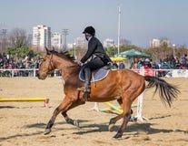 BURGAS, BULGARIA - 4 de marzo de 2017: Acción tirada de jinetes en carrera de caballos Foto de archivo libre de regalías