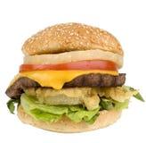 Burger ανανά Teriyaki Στοκ φωτογραφίες με δικαίωμα ελεύθερης χρήσης